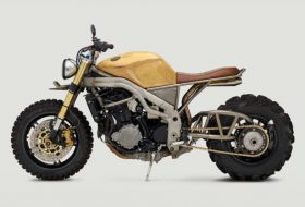 Triumph Speed Triple 'Frank' със задна гума от ATV